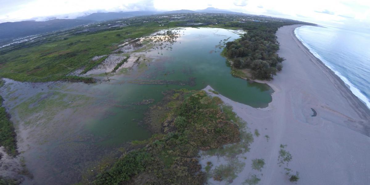 濕地與海岸保育