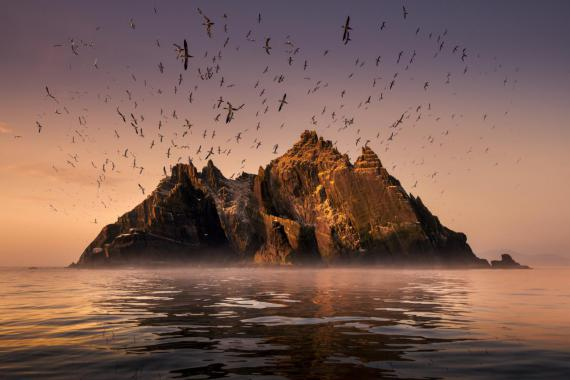 attenboroughs_ant_mountain-promo-still-1_1.jpg