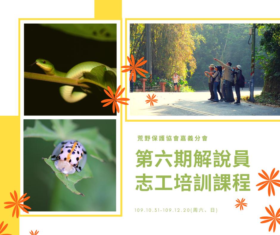 huang_ye_bao_hu_xie_hui_jia_yi_fen_hui__1.png