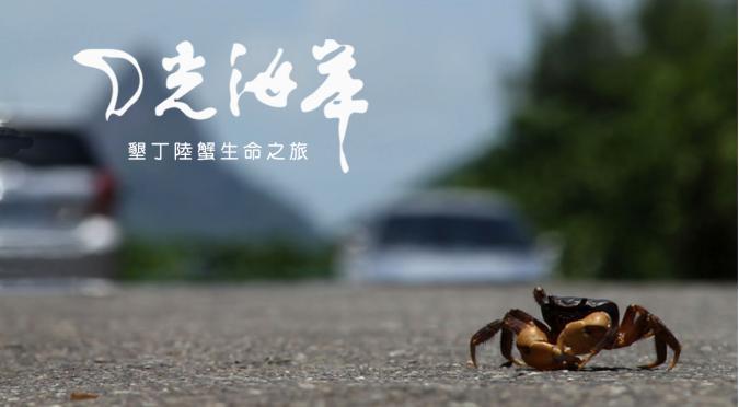 yue_guang_hai_an_.jpg