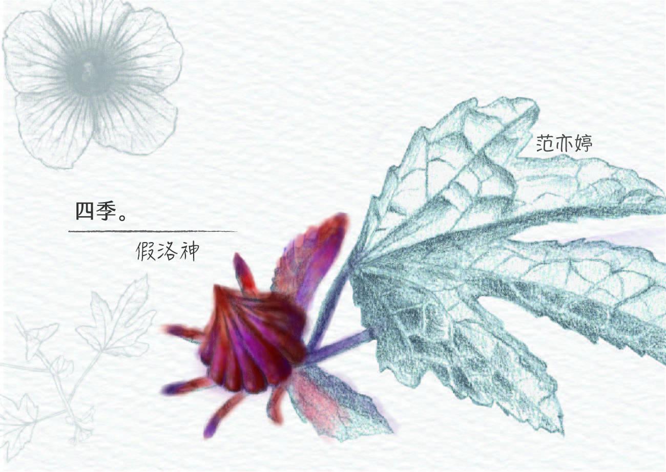 no.26si_ji_-jia_luo_shen__shu_qian_a__0729-01.jpg