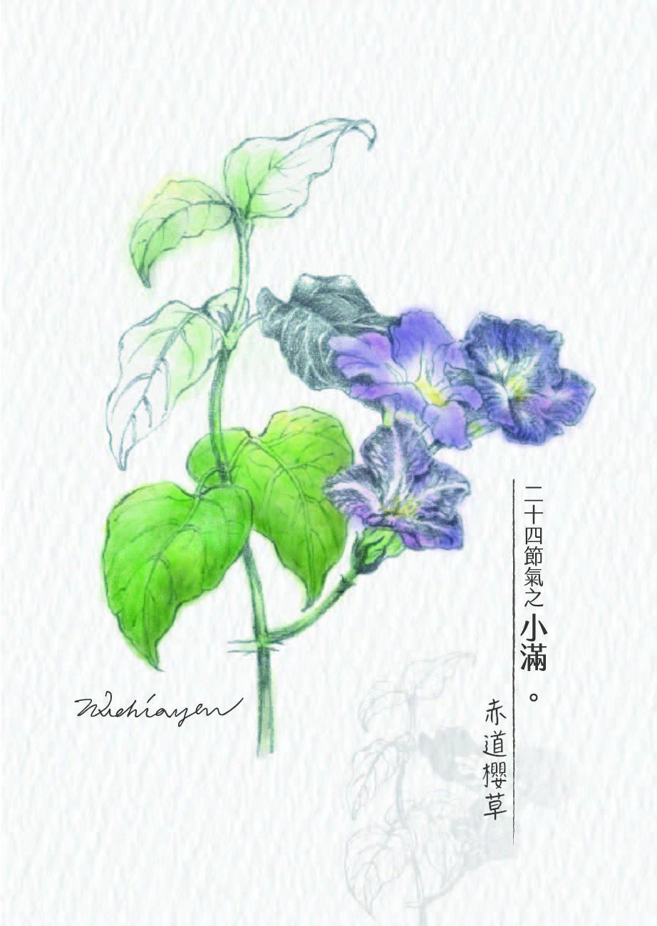 no.8xiao_man_-chi_dao_ying_cao___shu_qian_a0729_-01.jpg